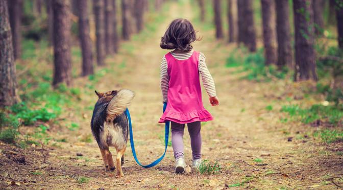 愛犬と森林浴。ペットと歩ける森でいつもと違うお散歩をしてみませんか?