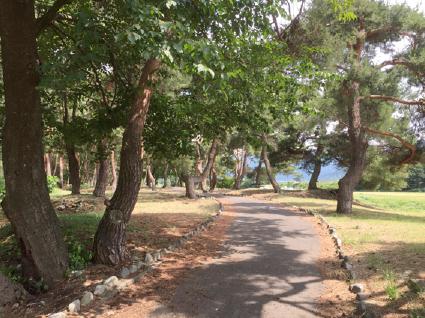 足の悪いわんちゃんでも大丈夫!須坂市のお散歩に良い場所ご紹介!須坂市「臥竜公園」