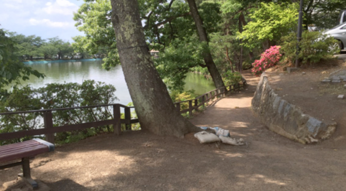 足の悪いわんちゃんでも大丈夫!須坂市のお散歩に良い場所ご紹介!〜老犬にもオススメ!〜